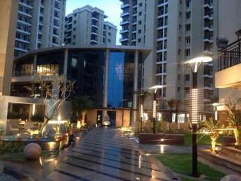 1200 sqft, 2 bhk Apartment in Anukampa Platina Sanganer, Jaipur at Rs. 45.5000 Lacs