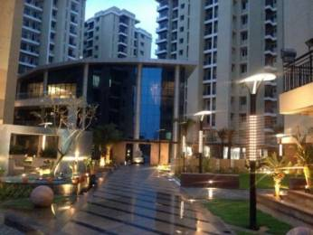 630 sqft, 1 bhk Apartment in Anukampa Platina Sanganer, Jaipur at Rs. 9000