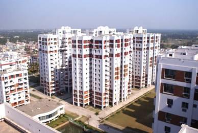 1015 sqft, 2 bhk Apartment in Pioneer Genexx Valley Joka, Kolkata at Rs. 15000