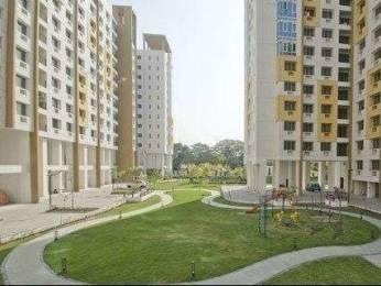 1845 sqft, 4 bhk Apartment in Ideal Ideal Regency Joka, Kolkata at Rs. 89.0000 Lacs