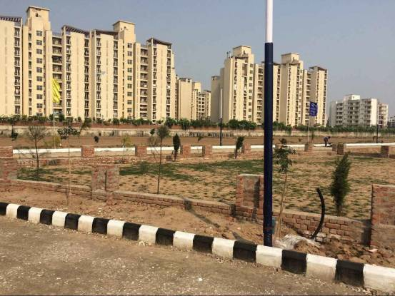 1125 sqft, Plot in Divine Residential Plots Sector 115 Mohali, Mohali at Rs. 20.2500 Lacs