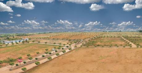 1503 sqft, Plot in Builder Project Dakamarri Village Road, Visakhapatnam at Rs. 25.8833 Lacs