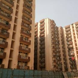 997 sqft, 2 bhk Apartment in Devika Gold Homz Sector 1 Noida Extension, Greater Noida at Rs. 30.0000 Lacs