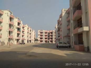 1087 sqft, 2 bhk Apartment in Builder Project Omicron 3, Greater Noida at Rs. 32.0000 Lacs