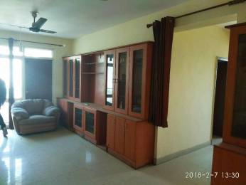 2107 sqft, 3 bhk Apartment in Omaxe NRI City Omega, Greater Noida at Rs. 16000