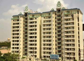 1650 sqft, 3 bhk Apartment in Samiah Melrose Avenue Vrindavan Yojna, Lucknow at Rs. 58.0000 Lacs