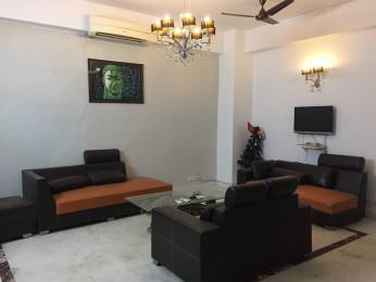 1953 sqft, 3 bhk BuilderFloor in Builder Project Defence Colony, Delhi at Rs. 70000