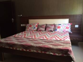 1560 sqft, 3 bhk Apartment in Builder Project Siddharth Nagar, Jaipur at Rs. 26000