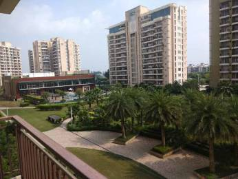 2200 sqft, 3 bhk Apartment in Omaxe Royal Residency Dad Village, Ludhiana at Rs. 98.0000 Lacs