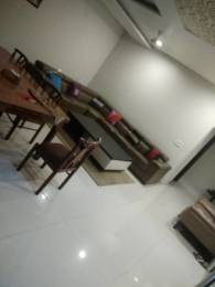 2700 sqft, 3 bhk Apartment in Builder Project Model town, Ludhiana at Rs. 40000