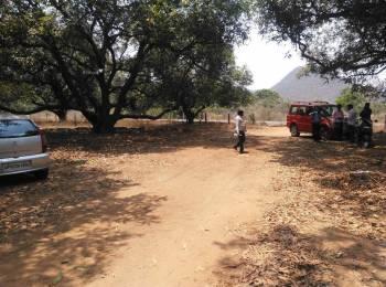 999 sqft, Plot in Builder nunna mango gardens Nunna, Vijayawada at Rs. 4.6666 Lacs
