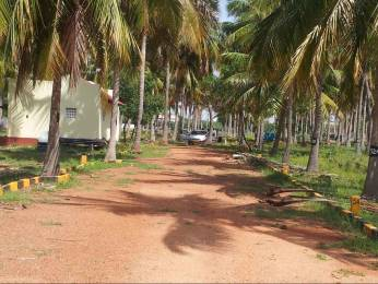 1200 sqft, Plot in Builder green land Viralimalai, Trichy at Rs. 2.4000 Lacs
