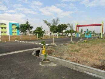 1750 sqft, Plot in Builder Sivathangam Kovilpalayam, Coimbatore at Rs. 14.0000 Lacs