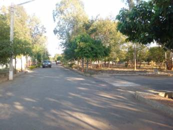 9100 sqft, Plot in Prestige Glenmorgan Whitefield Hope Farm Junction, Bangalore at Rs. 3.1800 Cr