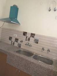 1500 sqft, 2 bhk BuilderFloor in Builder Project sector 71, Mohali at Rs. 19000