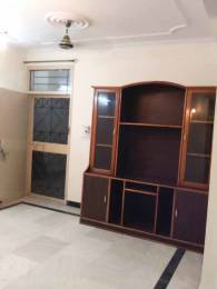 1600 sqft, 2 bhk Apartment in Builder Project Sector 63, Chandigarh at Rs. 19000