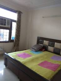 1600 sqft, 3 bhk Apartment in Builder Project sector 63, Mohali at Rs. 40000