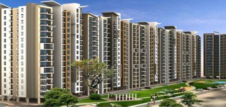 542 sqft, 1 bhk Apartment in Signature Synera Sector 81, Gurgaon at Rs. 12.8500 Lacs