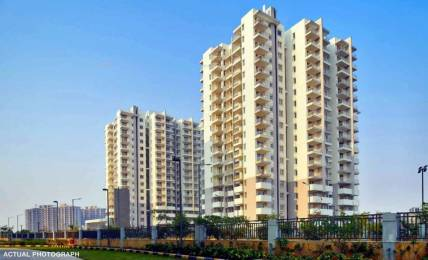703 sqft, 2 bhk Apartment in Signature Andour Heights Sector 71, Gurgaon at Rs. 22.0000 Lacs