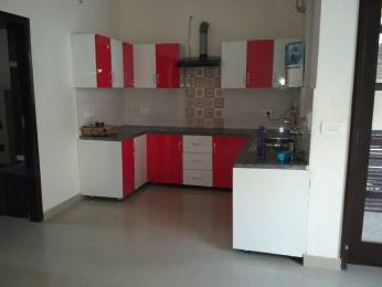 1000 sqft, 2 bhk Apartment in Soni Greens II Sector 127 Mohali, Mohali at Rs. 21.0000 Lacs