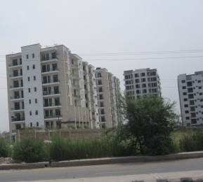 650 sqft, 1 bhk Apartment in SBP North Valley Sector 127 Mohali, Mohali at Rs. 16.0000 Lacs