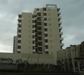 1320 sqft, 2 bhk Apartment in Shubham Gold Homes Sector 116 Mohali, Mohali at Rs. 34.3000 Lacs