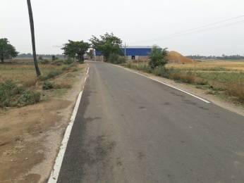 1200 sqft, Plot in Builder Prithvi green IIT BIHTA, Patna at Rs. 8.4000 Lacs