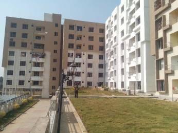 1050 sqft, 3 bhk Apartment in Builder Pristine Park Phulnakhara, Bhubaneswar at Rs. 48.0000 Lacs