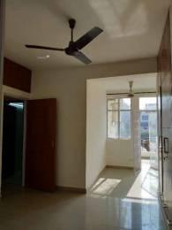 1600 sqft, 3 bhk Apartment in Builder dda sfs flat saket Saket, Delhi at Rs. 2.2000 Cr