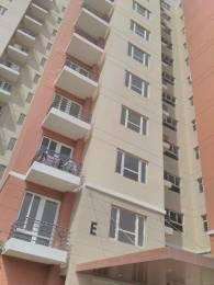 225 sqft, 1 bhk Apartment in Mahindra Aura Sector 110A, Gurgaon at Rs. 11000