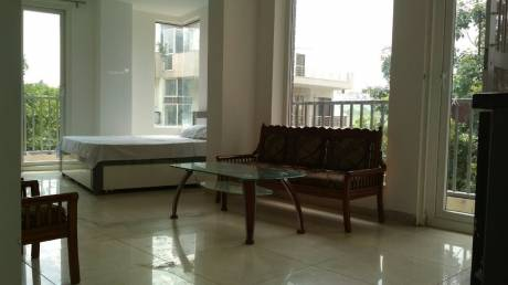 800 sqft, 1 bhk Apartment in DLF Phase 3 Sector 24, Gurgaon at Rs. 25000