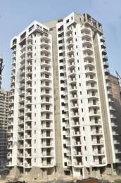 1650 sqft, 3 bhk Apartment in Town White Orchid Sector 16C Noida Extension, Greater Noida at Rs. 60.0000 Lacs