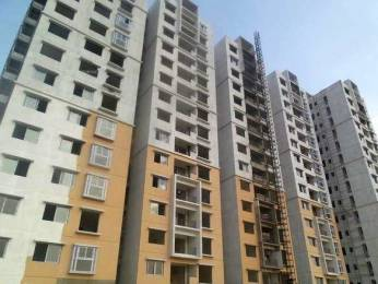 1125 sqft, 2 bhk Apartment in Ramky One Marvel Gajulramaram Kukatpally, Hyderabad at Rs. 32.0000 Lacs