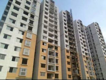 1368 sqft, 3 bhk Apartment in Ramky One Marvel Gajulramaram Kukatpally, Hyderabad at Rs. 39.0000 Lacs