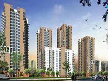 1580 sqft, 3 bhk Apartment in Pioneer Pioneer Park PH 1 Sector 61, Gurgaon at Rs. 1.2500 Cr