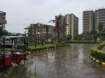 1673 sqft, 3 bhk Apartment in Trishla City Bhabat, Zirakpur at Rs. 60.7500 Lacs