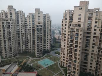 1815 sqft, 3 bhk Apartment in Unitech Fresco Sector 50, Gurgaon at Rs. 32000