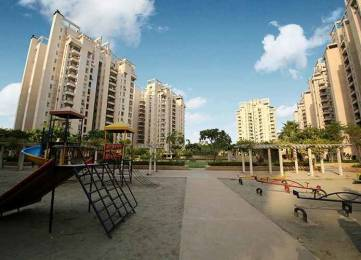 2061 sqft, 3 bhk Apartment in Orchid Petals Sector 49, Gurgaon at Rs. 42000