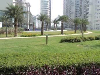 1125 sqft, 2 bhk Apartment in Emaar Palm Studios Sector 66, Gurgaon at Rs. 1.1000 Cr