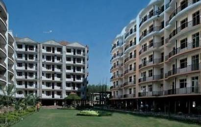 1590 sqft, 3 bhk Apartment in Trishla Plus Homes Sector 20, Panchkula at Rs. 44.0000 Lacs