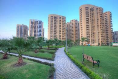 2150 sqft, 3 bhk Apartment in Suncity Parikrama Housing Complex Sector 20, Panchkula at Rs. 1.1500 Cr