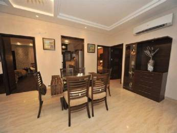 1800 sqft, 3 bhk Apartment in Builder Project Panchkula Sec 5, Chandigarh at Rs. 26000