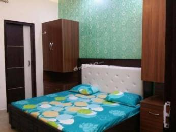 1250 sqft, 3 bhk Apartment in Builder AWHO Sector 20 Flats Sector 20 Panchkula, Chandigarh at Rs. 22000