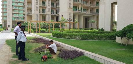 1650 sqft, 3 bhk Apartment in Builder Gaur Saundaryam Tech Zone 4 Greater Noida Wes, Noida at Rs. 68.0000 Lacs
