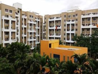 904 sqft, 2 bhk Apartment in Sukhwani Palms Wagholi, Pune at Rs. 42.0000 Lacs