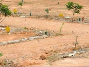 2700 sqft, Plot in Urban Ekta Garden Sector 12 Noida Extension, Greater Noida at Rs. 45.0000 Lacs