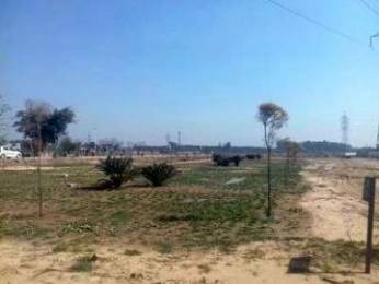 1802 sqft, Plot in Builder Project Dera Bassi, Chandigarh at Rs. 30.4000 Lacs