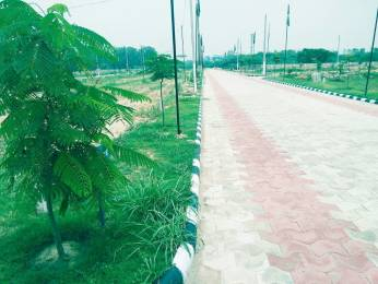 693 sqft, Plot in Builder kings valley Dera Bassi, Chandigarh at Rs. 8.7780 Lacs