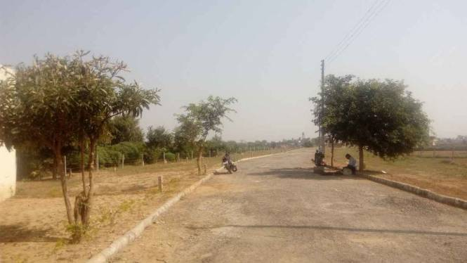 1116 sqft, Plot in SGNN Shree Guru Nanak Nagar Dera Bassi, Chandigarh at Rs. 10.5276 Lacs