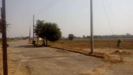 1116 sqft, Plot in SGNN Shree Guru Nanak Nagar Dera Bassi, Chandigarh at Rs. 10.5276 Lacs